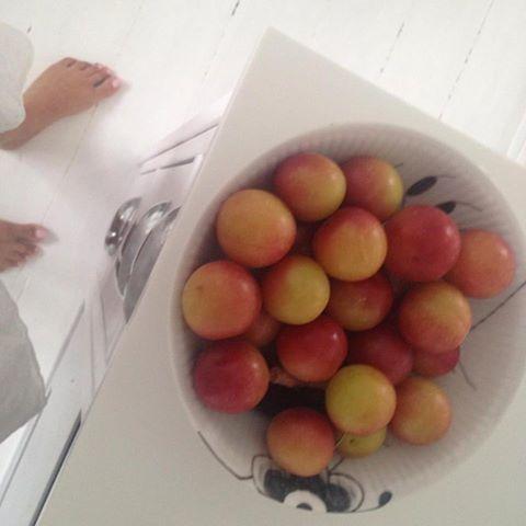 sundhed fyn - sundhed odense - sundhed online - sundhed på nettet - sundheds coach fyn - sundheds coach online - sundheds coach odense