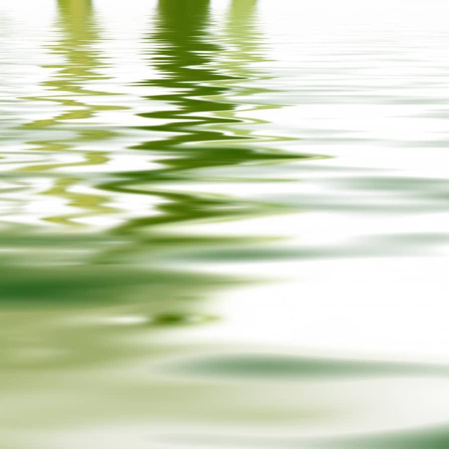Mindfulness Odense - Mindfulness Fyn