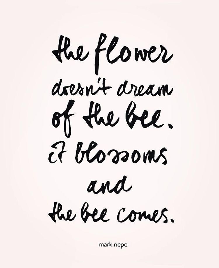 få mit liv til at blomstre - selvværd fyn selvværd odense - terapi fyn - terapi odense